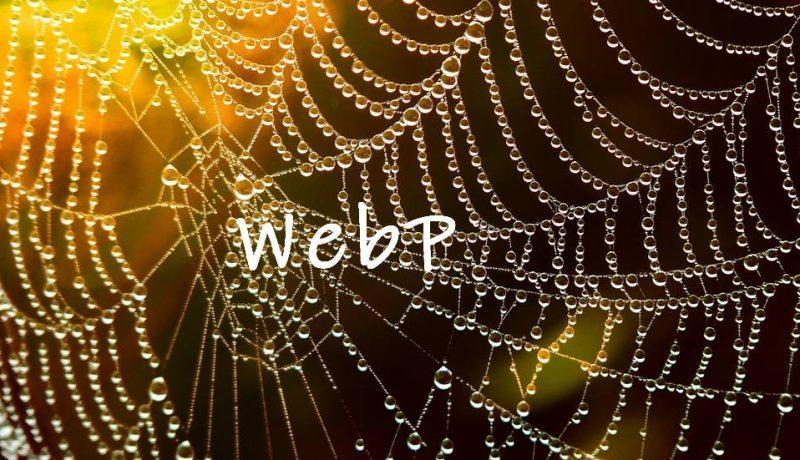mengaktifkan dukungan gambar webp di wordpress